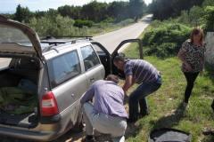 Croatisk punktering, 28.05.2012