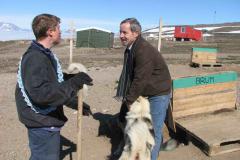 Slædehund Brum og Jack i Siriuspatruljen, 02.07.2008