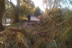 Storm ved søerne på frbr30.10.2013