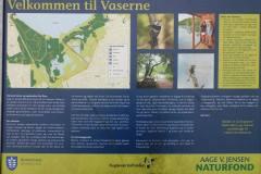1_Vaserne-15.02.2020-2