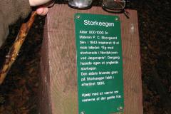 Storke Egen, 14.10.2007