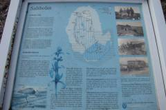 814.  Saltholm kort, 29.04.2012