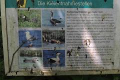 820.  Kort i Tyskland, 10.07.2013