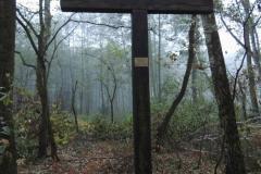 Jagtulykke i Polen, én jæger skød en anden med haglgevær