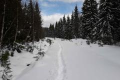 2-3-km gennem små 60 cm høj sne i Norge Trysil på bæverjagt, 07.05.2019