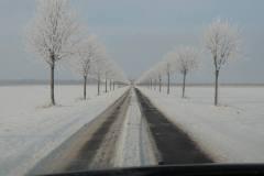 På vej til Sorø, 16.01.2013