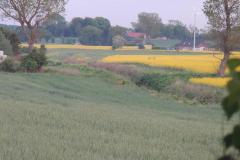 Terslev, 27.05.2013